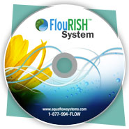 Promotional DVD-ROM Design for Flourish